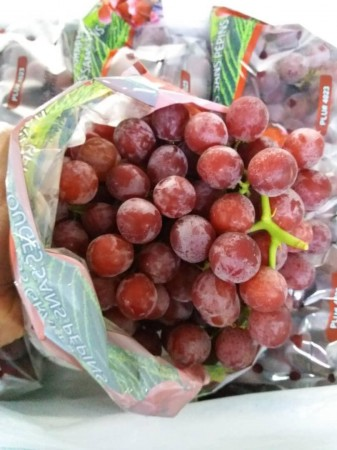 USA Red Grapes ($15/pkt)