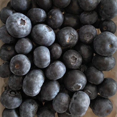 Blueberry - $5/pkt