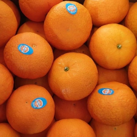 Mandarin Orange Egypt - $4/5pcs
