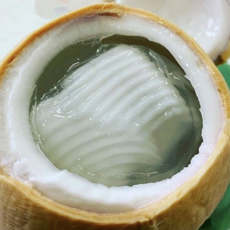 Jelly Coconut - $22/5pcs