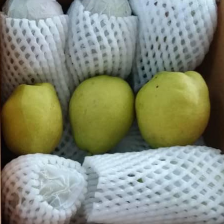 Fragrant Pear - $6/5pcs