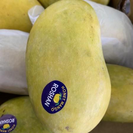 Pakistan Mango $3/pc