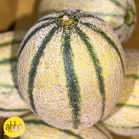 Australian Rock Melon - $10/pcs