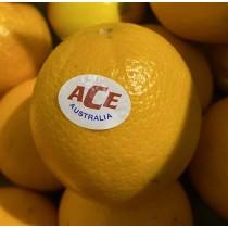 Australian ACE Navel (S) - $5/ 5pcs