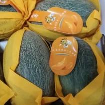 Hami Melon - $6/pcs