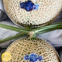 Japanese Musk Melon $80/pc