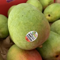 Australian R2E2 Mango $5/pc