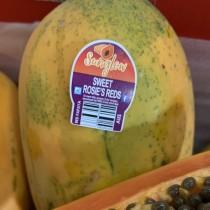 Australian Papaya - $8/pcs