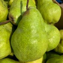 Aus Green Pear - $4/5pcs