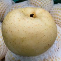 Golden Pear - $5/3pcs