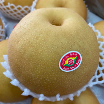 Nam Shui Pear - $7/3pcs