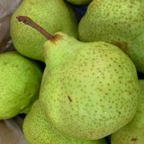 SA Green Pear - $5/4pcs