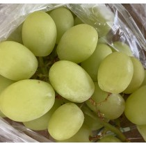 Peru Green Grapes ($15/pkt)