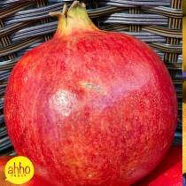 Pomegranate - $10 / 2pc