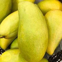 Thai King Mango ($7 / 2pc)