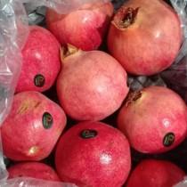 Pomegranate (India) - $4/pcs