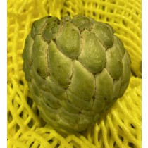 Thai Custard Apple ($10/ 2pc)